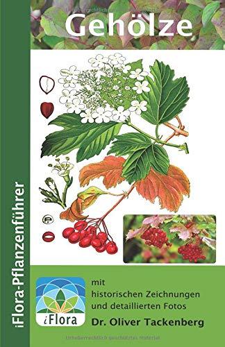 Gehölze: Bäume, Sträucher und Lianen (iFlora Pflanzenführer, Band 6)