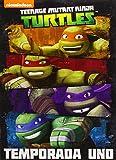 Las Tortugas Ninja - Temporada 1 [DVD]