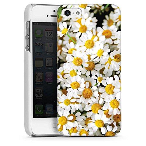Apple iPhone 5s Housse Étui Protection Coque Pâquerette Camomille Fleurs CasDur blanc