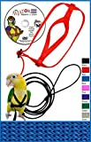 The AVIATOR is the HIGHEST RATED Bird Harness for a reason. We have the most experience, and over 300,000 sold around the world in 10 years. We offer many ADVANTAGES. Our custom high quality KNITTED FLEXIBLE strap material on our larger sizes creates...