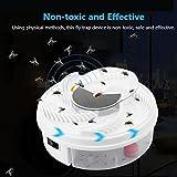 huichang Elektrische Fliegenfalle, Moskito Insektenvernichter mit Trapping Food - USB Kabel