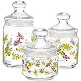 Luminarc Crazy Flower Glass Pot Club Set, 3-Pieces, Multicolour