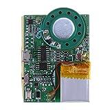 Anysell programmable Puce sonore voix Musique à puce de module pour carte de vœux DIY...