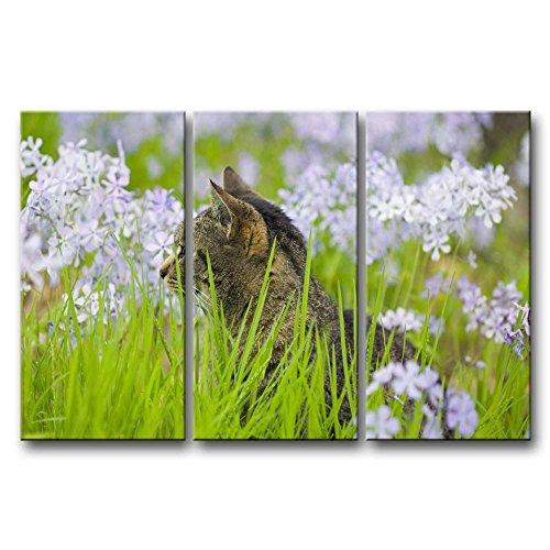 3Panel Art Wand Bild Katze im Gras mit Weiß Blume Drucke auf Leinwand der Animal Bilder Öl für Home Moderne Dekoration Print Decor für Schlafzimmer
