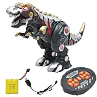 Ingrirt5Dulles RC Rechargeable Mechanical Walking Dinosaur with Sound Light Interactive Kid Toy Black
