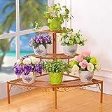 RONG HOME Balcon Pot de Fleurs Pied d'angle étagère Plante Container, Fer Fleur Shelf Fleuriste Décoration Présentoir pour Salon/Chambre/Bureau/Hôtel,d'or...