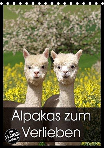 Alpakas zum Verlieben (Tischkalender 2018 DIN A5 hoch): Alpakas - Tiere, in die man sich einfach verliebt (Planer, 14 Seiten ) (CALVENDO Tiere) [Kalender] [Apr 01, 2017] Rentschler, Heidi