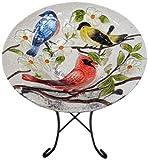 Continental Art Center cac2412801Vogeltränke Glas Schüssel, 13von 2Zoll, drei Vögel