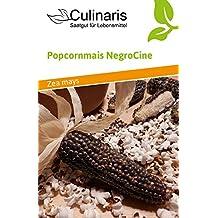 Culinaris 033 Popcornmais NegroCine (Bio-Popcornmaissamen)