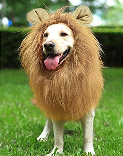 IW.HLMF Lion Mane for Dog Large Medium with Ears Dogs Funny Gifts Pet Lion Mane Kostüm Drawstring Button Adjustable Cosplay Party Holiday Photo Shoots Festival Wig Light ()