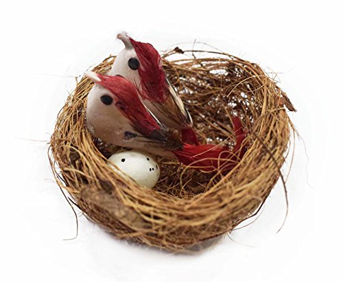 Asian Hobby Crafts Artificial Mini Birds with Nest (Pack of 5)