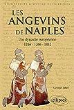 Les Angevins de Naples Une Dynastie Européenne 1246-1266-1442