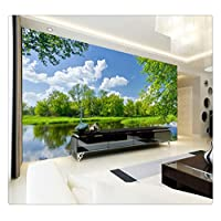 Wall Mural Wall Painting 3D Blue Sky White Clouds Nature Scenery Wallpaper for Bedroom Walls Non-Woven Wallpaper Wall 3D,430Cmx300Cm