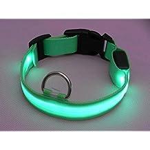 Lesypet Luz LED intermitente perro mascota collar de seguridad ajustable de nylon 2,5cm de ancho (Rojo, Amarillo, Azul, Verde, Naranja, Rosa) & (Pequeño, Mediano, Grande, Extra Grande)