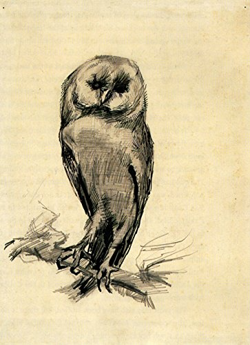 Spiffing Prints Vincent Van Gogh - Barn Owl Viewed from The Front, 1887 - Extra Large - Archival Matte - Black Frame - Owl Giclée Print