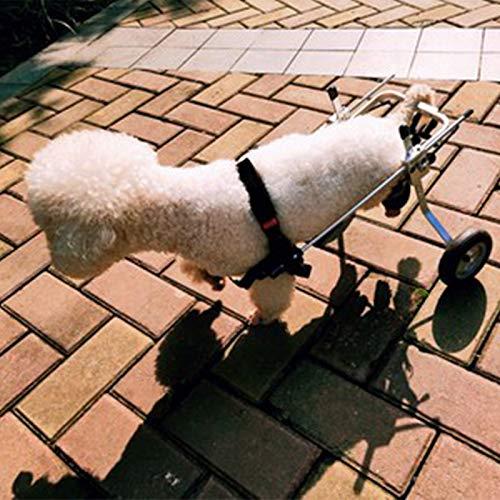 JXJL Silla De Ruedas Ajustable para Perros Rehabilitación De Piernas para Perros Discapacitados Carro De Acero Inoxidable De Dos Ruedas Mascota,XS