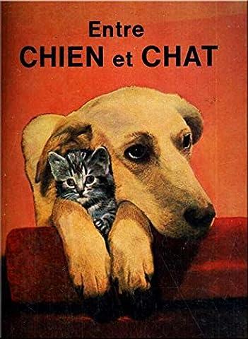 Entre Chien et Chat : Une randonnée par les jardins et les toits, sous la conduite de Véra