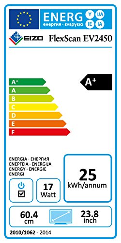 EIZO EV2450-BK 24-Inch LCD/LED Monitor - Black