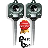PestBye PB0032X2, 2 x PestBye Katzenvertreiber, Batteriebetrieben - Wetterfest - Ultraschall Katzen Vertreiber / Katzenschreck