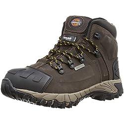 Dickies FD23310 BR 12 Medway Chaussures de sécurité S3 Taille 47 Brun