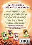 Das Krafttier-Orakel: Ein liebevoller Begleiter im Alltag - 64 Karten mit Begleitbuch - Jeanne Ruland