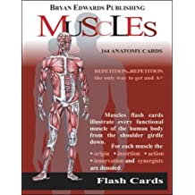 Flash Anatomy Flash Cards: The Muscles