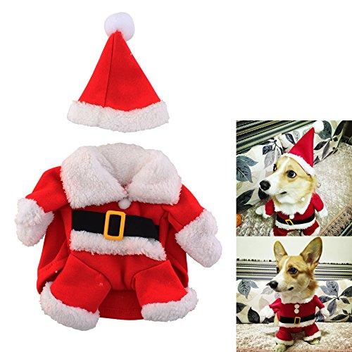 Weihnachtsmann-Kostüm für kleine Hunde mit Weihnachtsmütze ( Größe L ) - Hundepullover Hundekleidung Party Mottoparty Weihnachten Cosplay - Nikolaus Santa ()