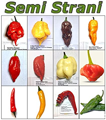 120 GRAINES de les PIMENT CHILI PLUS PIQUANT et SAVOUREUX DU MONDE - COLLECTION 3: CAROLINA REAPER, PRIMO YELLOW, BHUT JOLOKIA / GHOST CHILI CHOCOLATE, BHUT JOLOKIA / GHOST CHILI PEACH, HABALOKIA RED, HABANERO MAYA RED, HABANERO WHITE GIANT, MUSHROOM RED, MALAGUETA PIMENTA DO BRAZIL, CAYENNA ORANGE, ELEPHANT TRUNK, ANAHEIM HOT PEPPER
