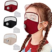 BeAcient Dust Mask Kids with Transparent Eye Shield, Unisex Breathable Anti Haze Fog Safety Face Mouth Mask Suitable for Public Areas (3PCS F)