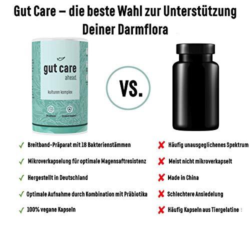 ahead® GUT CARE | Kulturen Komplex mit 18 Bakterienstämmen, 15 Mrd KbE, 90 Depot-Kapseln für die Darmflora mit Prästoffen Inulin und Oligofruktose | mit Zink für das