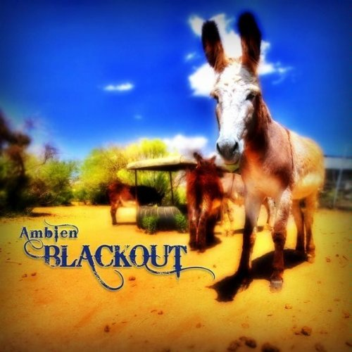 ambien-blackout-by-chance-houston