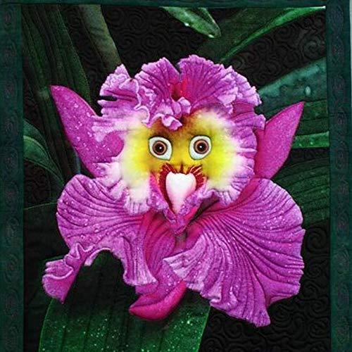 MEIGUISHA Gartensamen-Mischung seltenste babygesicht orchidee mehrjährige blumensamen Pflanze Blume Samen professionel gartendekor (50) -