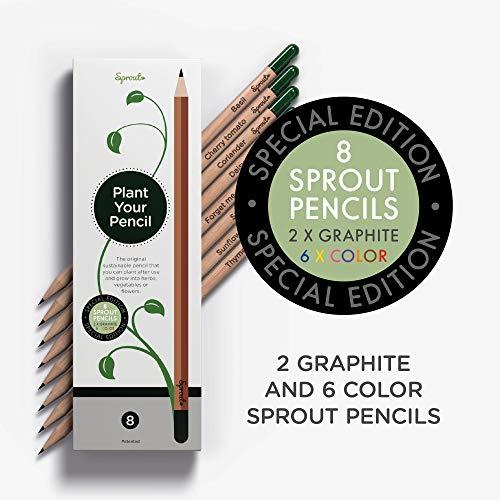 Sprout Pencils | Edizione speciale delle matite Sprout piantabili | 6 matite colorate e 2 da disegno in grafite | Legno naturale e biologico | Scatola da 8
