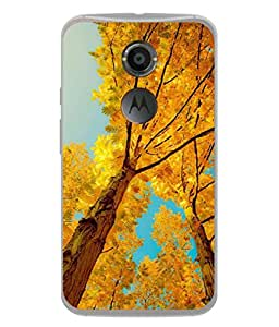 Fuson Designer Back Case Cover for Motorola Nexus 6 :: Motorola Nexus X :: Motorola Moto X Pro :: Google Nexus 6 (Caligraphy Font Quote Beauty Beautiful )