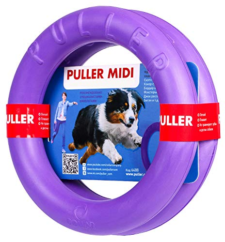 Puller 6488 Spielringe Schwimmringe 2-er Set Midi 20 cm… | 04823089301556
