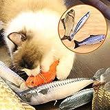 CricTeQleap Katzen Teaser Spielzeug, Nette Katze Mint Fisch Gef¨¹llte Fisch Form Dekokissen Haustier Katze Scratch Spielen Spielzeug - Forelle 30cm