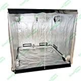 2x2 Grow Tents Review and Comparison