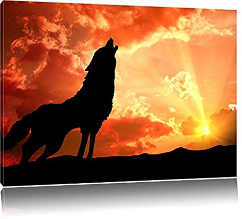 hurlements de loup solitaire au coucher du soleil, Format: 60x40
