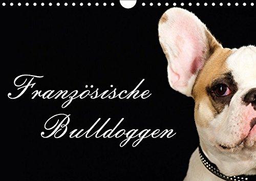 Französische Bulldoggen (Wandkalender 2017 DIN A4 quer): 13 Motive einer wunderbaren Hunderasse - Die Französische Bulldogge (Monatskalender, 14 Seiten) (CALVENDO Tiere)