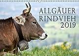 Allgäuer Rindvieh 2019 (Wandkalender 2019 DIN A3 quer): Ein Kalender für alle Allgäu- und Kuhliebhaber. (Monatskalender, 14 Seiten ) (CALVENDO Tiere)