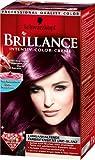 Schwarzkopf Brillance / 859 / Violet soie sauvage / intensif-Couleur-Creme