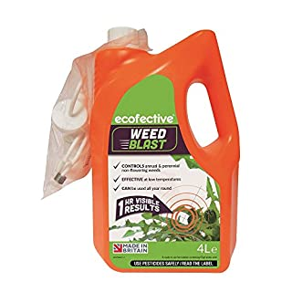 Ecofective Weedblast Weed Killer 4L Ready to Use