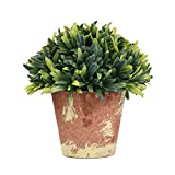 51D4SjSfk4L. SL160  - NO.1 HOME DESIGN# LianLe Mini Artificial Plant Country Style Brown Planter Potted Home Table Office Decoration