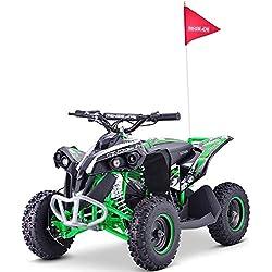 QLHQWE Race-X 36V 1000W Elettrico Ricaricabile Quad Bike - Verde