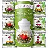 Teabloom Der beste Blütentee mit blühenden Teekugeln – 12 Packungen – 36 Aufgüsse, ergibt 250 Tassen – Grüner Tee mit Echten Jasmin-Blüten