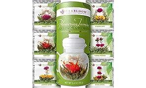 Teabloom Flowering Tea – Hand Tied Green Tea Leaves + Jasmine Blossoms Flowering Tea Creations – Blooming Tea Gift Set – 12-Pack, 36 Steeps, Makes 250 Cups