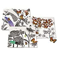 Il-giardino-delle-farfalle-Ediz-illustrata