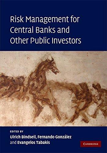 risk-management-for-central-banks-and-other-public-investors-2009-01-15