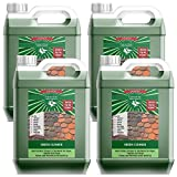 4x5L Lancelot Green Cleaner for Driveways, Roofs, Walls, Decking, Patios and more - Concentrated Cleaner. Black Mould, Lichen and Algae Killer. Removes Moss. Previously known as Mistral MossKill.