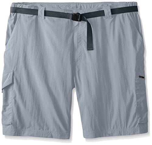 Columbia Herren Silber Ridge Shorts Aschgrau